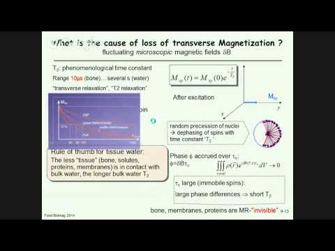 9.2 - Relaxation of nuclear magnetization