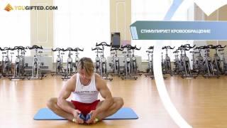 Фитнес. Стретчинг(http://www.yougifted.com/ Упражнения для растягивания и улучшения гибкости. Стретчинг., 2011-09-27T12:37:04.000Z)