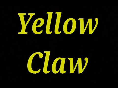 Full album yellow claw