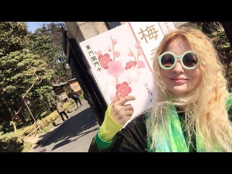 Adeyto LIVE Koishikawa Korakuen Stunning Japanese Garden Plum Blossom TOKYO & Matcha 🍵