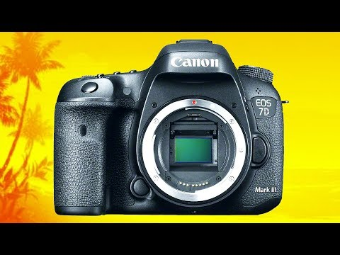 Is the Canon 7D Mark III even RELEVANT any More?
