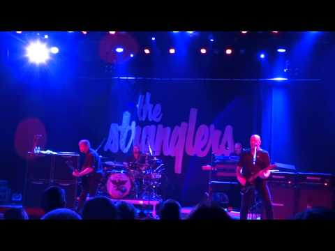 The Stranglers @ Reo ROck Roeselare 2015 Hanging around