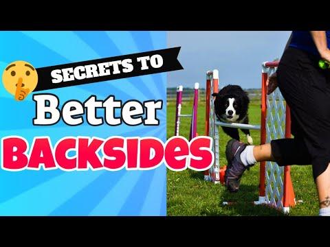 Dog Agility Backside Jump Training
