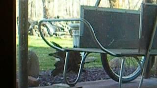 My Vermont Garden Cart Improvement + Our Wild Turkey