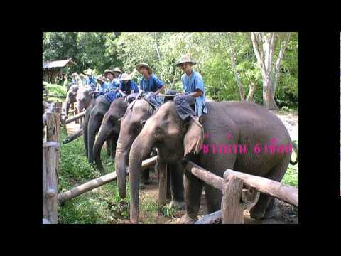 ED THAI KKU ลักษณนาม