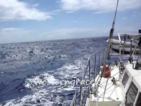 Offshore Sailing Cabo to Hawaii
