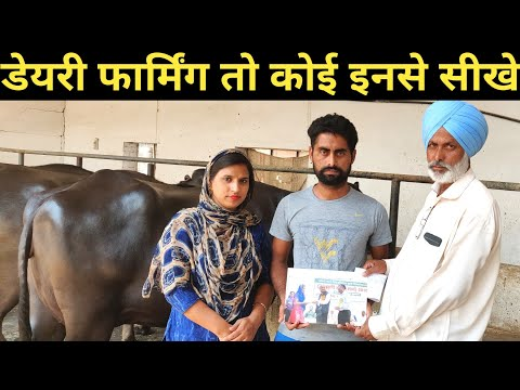 How to start Dairy Farming Training with successful farmer