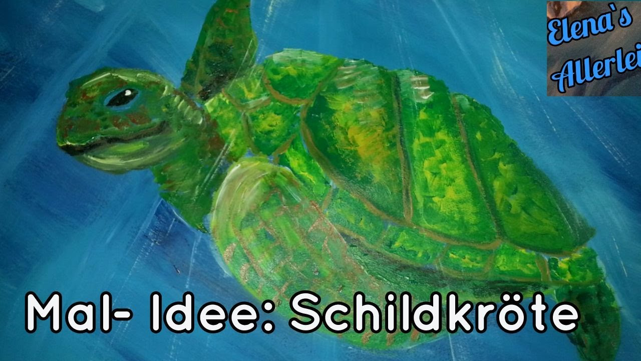 Berühmt Schildkröte Farbseite Zeitgenössisch - Framing Malvorlagen ...