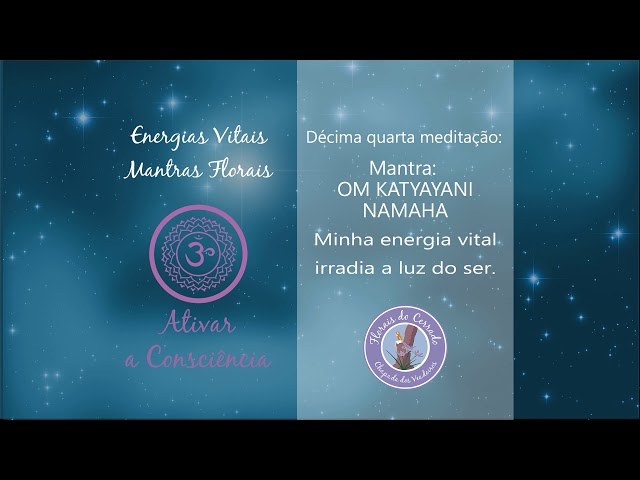 14° Meditação - Ativar a Consciência