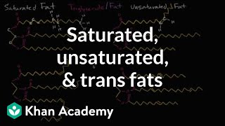 Saturated fats, unsaturated fats, and trans fats | Biology | Khan Academy