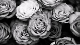 """White Roses"" 90s OLD SCHOOL BOOM BAP BEAT HIP HOP INSTRUMENTAL"
