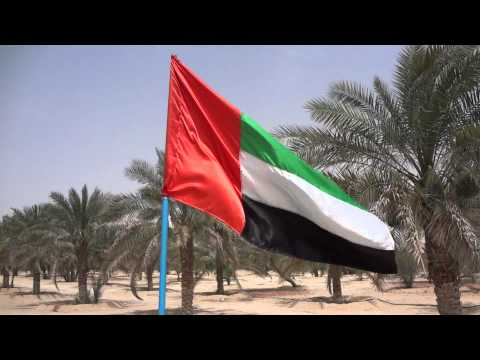 United Arab Emirates Flag UAE Liwa Oasis