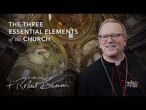 Bishop Barron on the Three Essential Elements of the Church