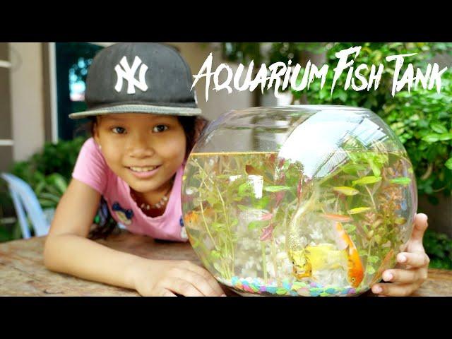 My First Aquarium Fish Tank