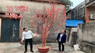 Hưng Troll | Làm Cây Hoa Đào Khổng Lồ Bằng Nến Tặng Mẹ Bà Tân Vlog Đón Tết