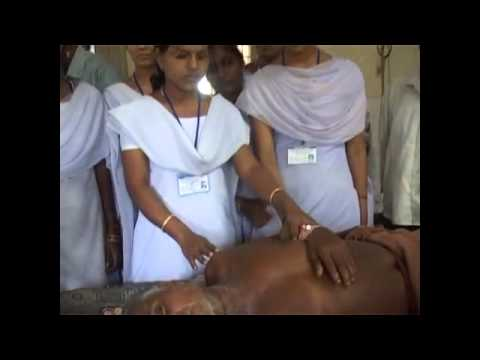 Puri Saraswati School of Nurshing
