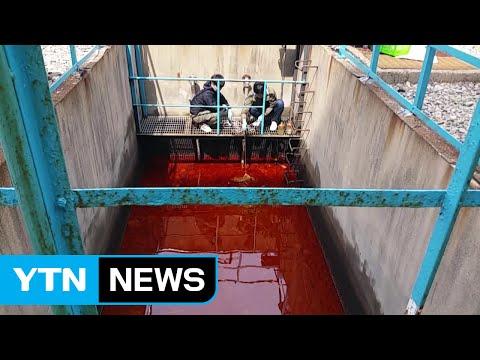 '폐유 몰래 바다에 배출'...동서발전 수사 / YTN (Yes! Top News)