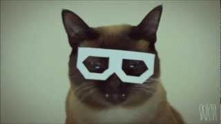 stereo skifcha ~ dubstep cat 10 hours