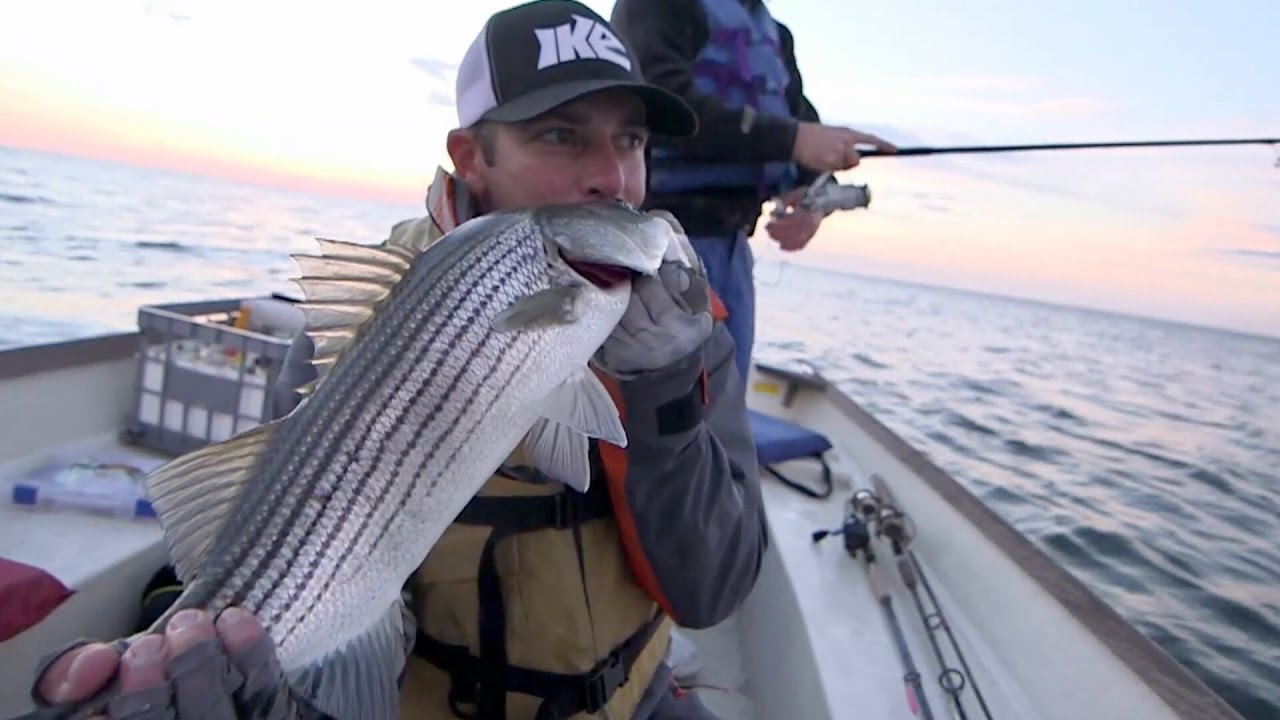 5e525bafb3 Striped Bass on Topwaters!!! Connecticut Fishing Adventure (Going ...