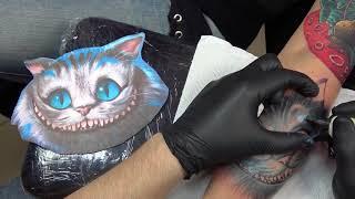 Чеширский кот, 1 сеанс