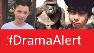 leafy striked for bullying dramaalert jacob sartorius new music video red kiwiz harambe
