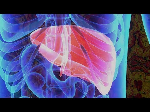 Liver - 317.83 Hz - Digital Tuning Fork - Organ Series - Meditation