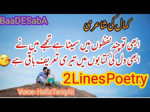 Lovely 2 Lines Romantic Poetry|Best Collection|Part-114|Urdu/Hindi Sad Poetry|By Hafiz Tariq Ali|