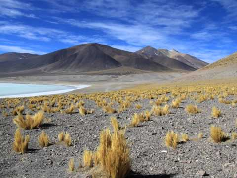 Landscape of Chile