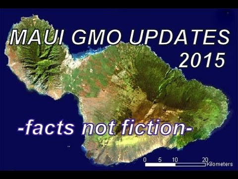 MAUI HAWAII GMO UPDATES -  FACTS NOT FICTION 2015