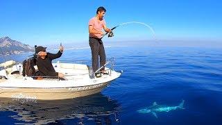 Antalya'da Oltayla Yakalanan Dev Köpek Balığı !!