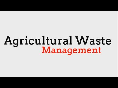 Agricultural Waste Management- Turning Vegetable Waste Into Culture Media