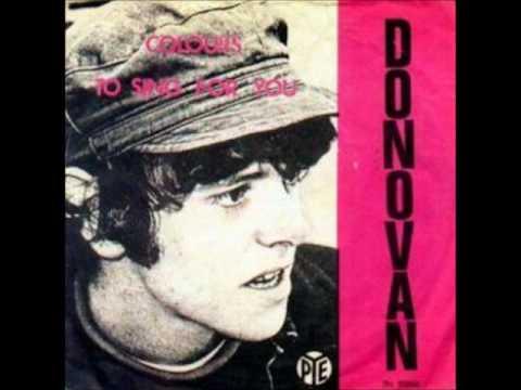 Donovan Colours