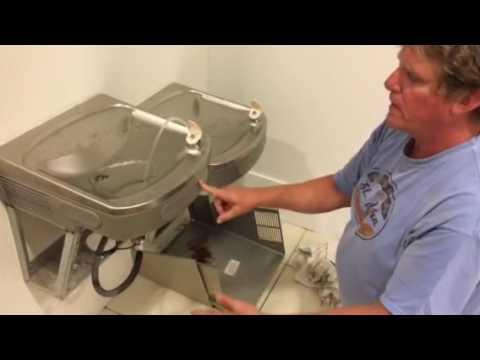 Elkay drinking fountain repair