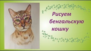 Мастер класс по созданию картины - Бенгальская Кошка