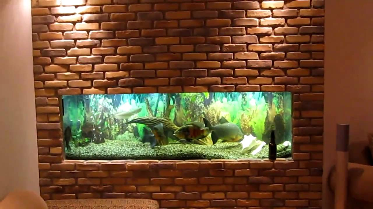 Wall fish tanks designs images for Fish tank built into wall