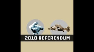 BC Electoral Reform Referendum 2018 Explained: FPTP or Proportional Representation[Chicken or Fish]