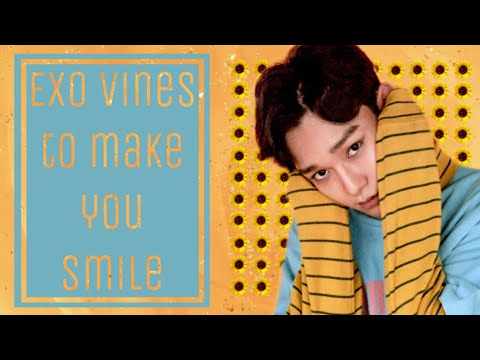 EXO Vines To Make You Smile Pt.11
