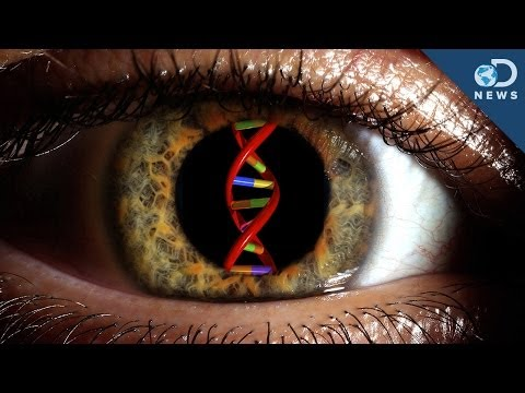 can-gene-therapy-cure-blindness?