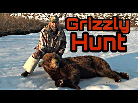GRIZZLY BEAR HUNT! Alaska 2013 #2: The Guide Chronicles