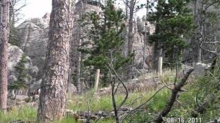 Hiking Up Harney Peak, Black Hills, South Dakota