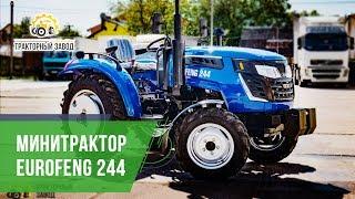 Минитрактор EuroFeng 244 обошел Dong Feng. Обзор и характеристики минитракторов ТД Тракторный Завод