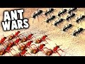 RED ANTS vs BLACK ANTS!  HUGE Ant Surface INVASION (Empires of the Undergrowth Part 2 Gameplay)