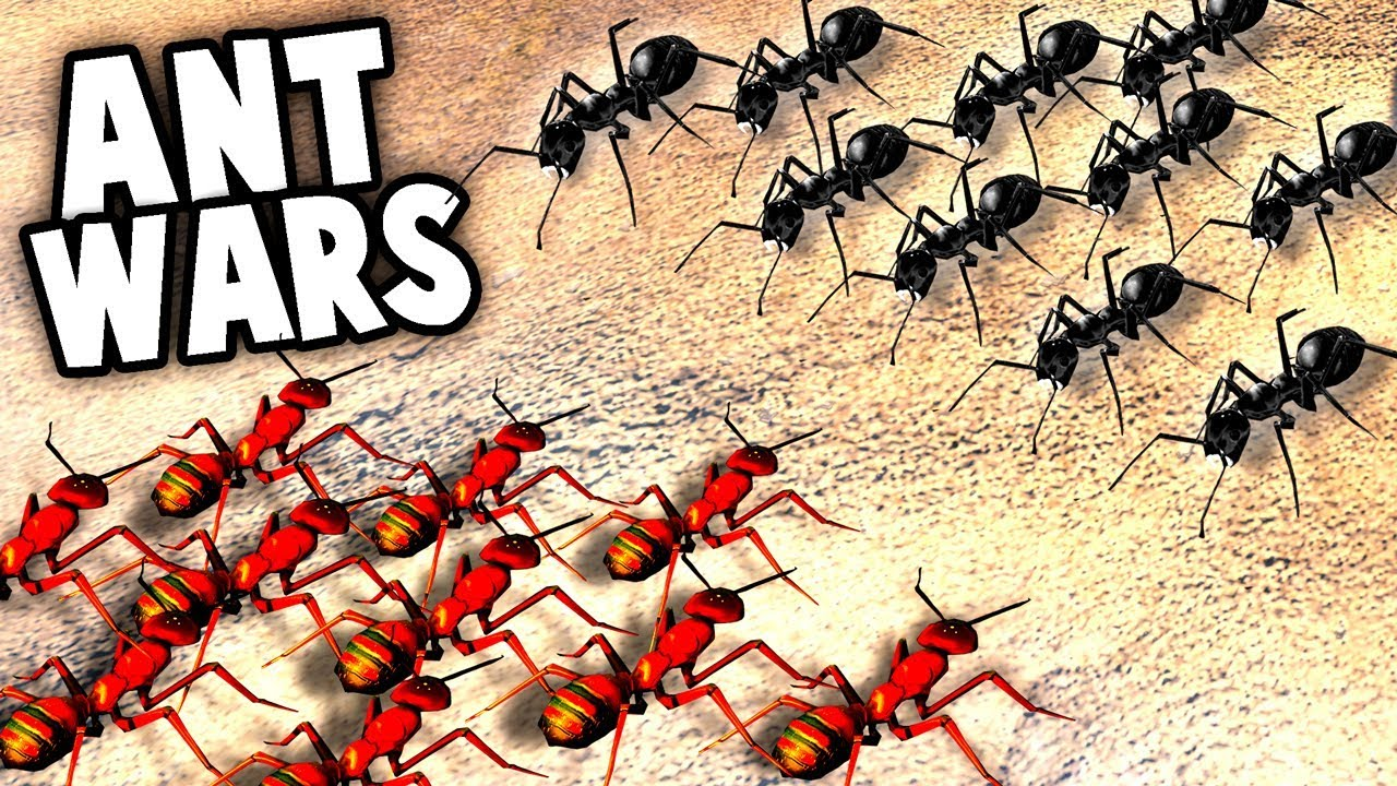 red ants vs black ants huge ant surface invasion empires