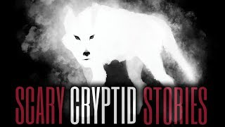 10 TRUE  Scary Cryptid Stories (Vol. 24)