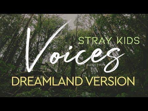Stray Kids - Voices | Dreamland Version