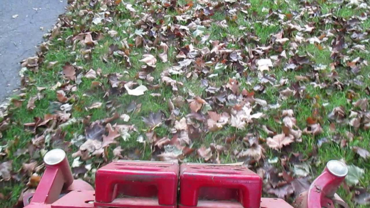 Leaf Clean Up Hagerstown MD Williamsport MD Washington County MD
