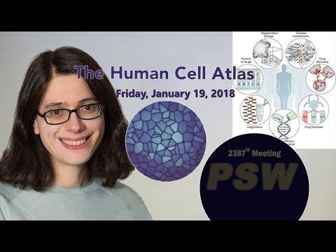 PSW 2387 The Human Cell Atlas | Aviv Regev