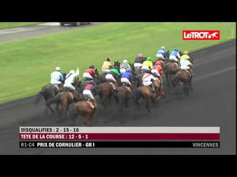 Vincennes   -   Prix de Cornulier (GROUPE I)   -   24-01-2016   -   Scarlet Turgot