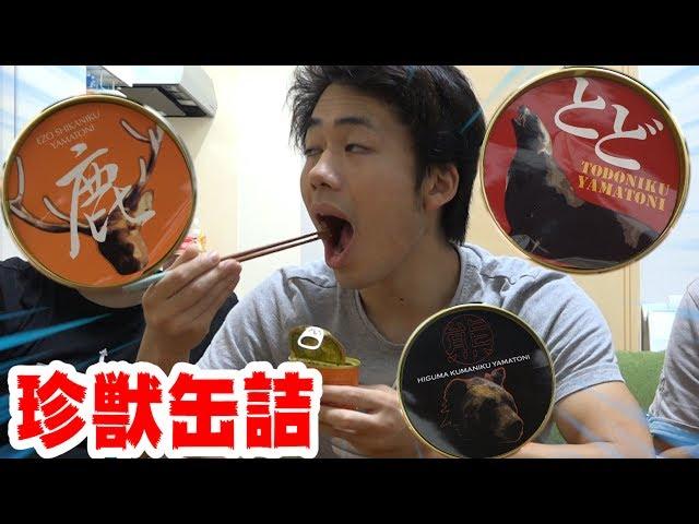トド・シカ・クマを食う!?珍獣缶詰めが衝撃的な味すぎた…。