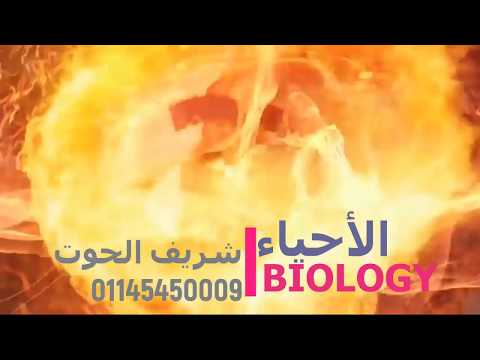 #1 BIOLOGY اولي ثانوي 2018 #Carbohydrates